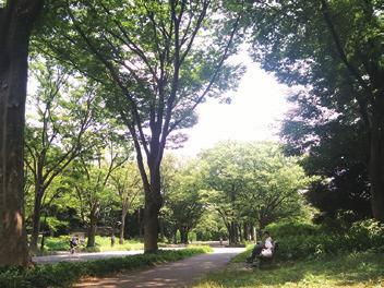 駒沢大学エリアレポート_04