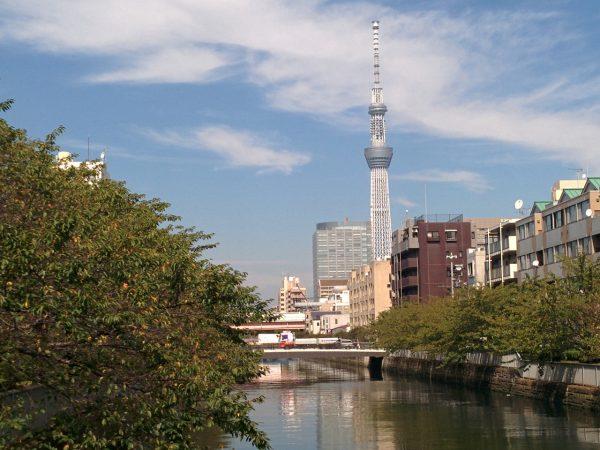 水と緑の潤いを感じられる下町『菊川』