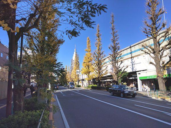緑地に囲まれた洗練された街「千駄ケ谷」